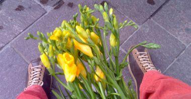 scarpe camper con un mazzo di fresie gialle