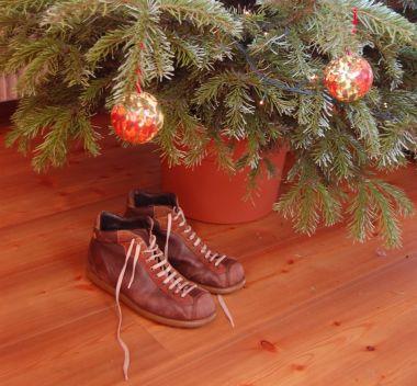 scarpe camper sotto l'albero